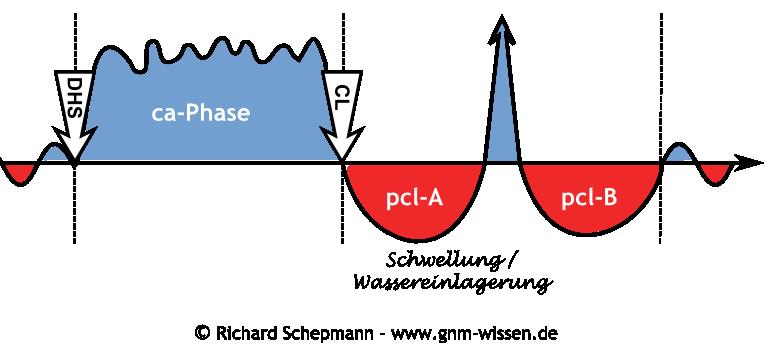 Hamerscher Kompaß - pcl-A-Phase